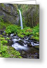 Dry Creek Falls Greeting Card