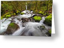 Dry Creek Falls In Spring Greeting Card