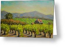 Dry Creek Valley View Greeting Card
