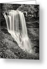 Dry Falls - Blue Ridge Mountains - Number Two Greeting Card