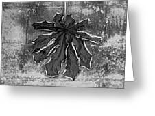 Dry Leaf Collection Bnw 1 Greeting Card