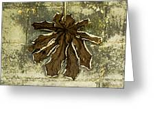 Dry Leaf Collection Natural Greeting Card