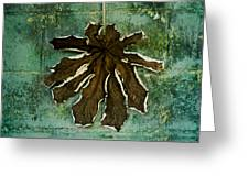 Dry Leaf Collection Wall Greeting Card