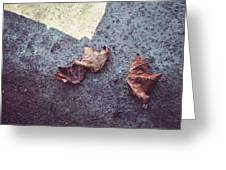 Dry Leaves Greeting Card