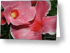 Dual Beauty In Pink Greeting Card