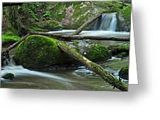 Dual Falls 2 Greeting Card