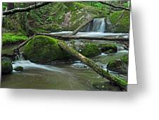 Dual Falls Greeting Card