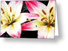Dual Pinks II Greeting Card by Amanda Kiplinger