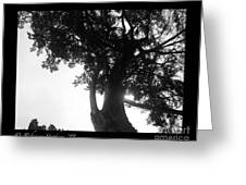 Dubignon Tree Greeting Card