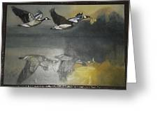 Duck Are Flying On The Sea Side Greeting Card