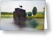 Duck Blind Greeting Card