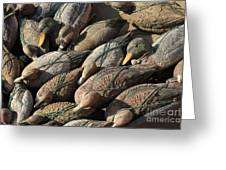 Duck Decoys On Burano Greeting Card