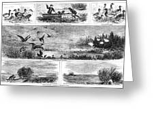 Duck Hunting, 1868 Greeting Card