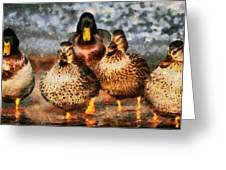 Duck - Id 16235-220308-3425 Greeting Card