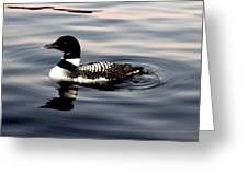 Duck On The Lake Greeting Card
