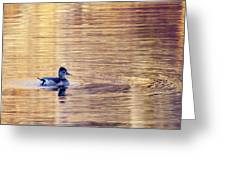 Duck Pond 3 Greeting Card