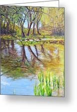 Duck Pond I Greeting Card