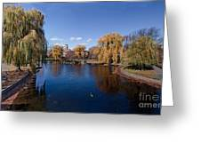 Duck Pond Public Gardens Boston Massachusetts Greeting Card
