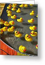 Duckies Greeting Card