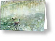 Ducks In The Shade    Greeting Card