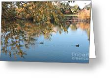 Ducks On Peaceful Autumn Pond Greeting Card