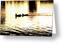 Ducks On Pond 1 Greeting Card