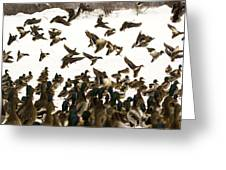 Ducks On The Move Greeting Card