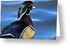 Ducktail Soup Greeting Card