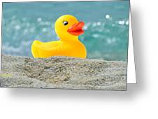 Ducky's Fun Day  At The Beach Greeting Card