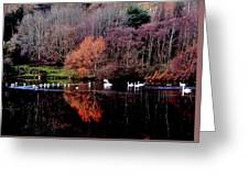 Duddingston Swan 17 Greeting Card