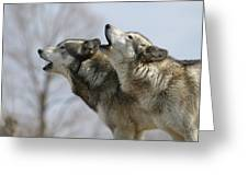 Duet Howl Greeting Card