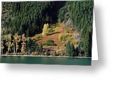Duffey Lake Colors Greeting Card