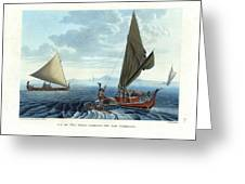 Dugout Outriggers From The Carolines Seen On Tinian Island Greeting Card by d apres A Berard and A Taunay