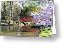 Duke Garden Spring Bridge Greeting Card