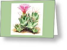 Dumpling Cactus Greeting Card