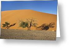Dune 45 And Trees Greeting Card