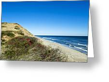 Dune Cliffs And Beach Greeting Card