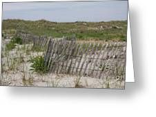 Dune Landscape Greeting Card