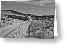 Dune Path In Black And White Greeting Card