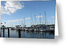 Dunedin Marina I Greeting Card