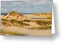 Dunes At Gulf Shore Greeting Card