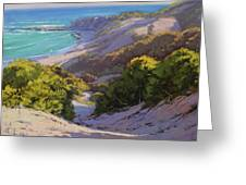 Dunes At Soldiers Beach Greeting Card