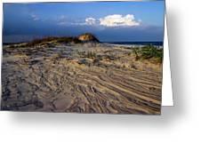 Dunes At St. Simons Island Greeting Card