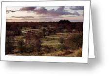 Dunes At Sunrise #2 Greeting Card
