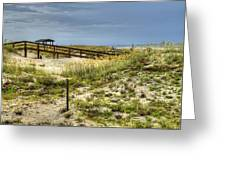 Dunes At Tybee Island Greeting Card
