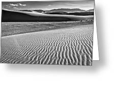 Dunes Details Greeting Card