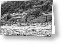 Dunes In Black And White Greeting Card