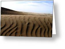 Dunes Of Alaska Greeting Card