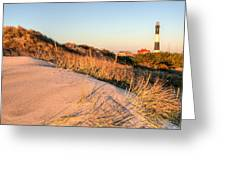 Dunes Of Fire Island Greeting Card