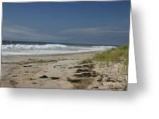 Dunes On Long Island Greeting Card